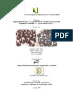 07_Informe Subproducto .Derivados del cacao