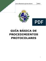 Guia Deprocedimientos de Protocolo Uruguay
