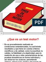 Tipos de Test Motor