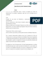 Auditoria Ciclos de Transacciones Trabajo CORY.doc