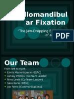Fixation Powerpoint