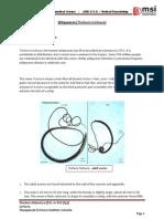Whipworm (Trichuris trichiura)  PDF - Thushara Balasuriya,MSI