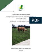 Produção Agrária