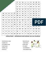 PUPILETRA PLANTAS