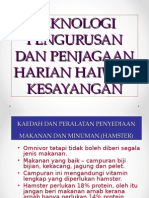 Pengurusan dan penjagaan harian..ppt