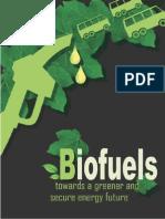 limitation of using biofuels and ethanol as a trasportation Fuel