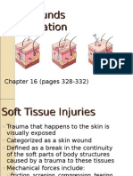 Skin Wounds Classifications