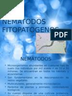 Nematodos Fitopatógenos