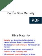 Fibre Maturity