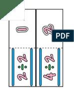 Print Division