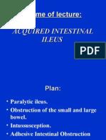 acquiredintestinalileus-131003164413-phpapp01