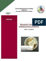 monografia beta lactamicos SUBIR.pdf