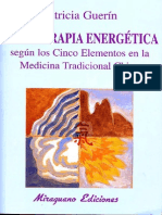 - Dietoterapia Energética Según MTC - Patricia Guerín (257)