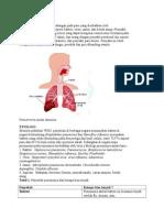 penyakit pneumonia pada dewasa
