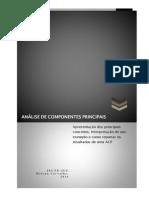 ACP Teoria&Outputs _2014_ (1)