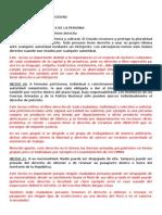 Analisis constitucion 19 20