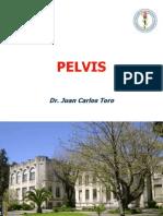5.10 Pelvis