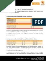 Exemplo de Relatorio Mídias Sociais.pdf