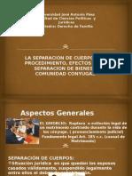 Derecho de Familia (Laminas Para La Exposicion)