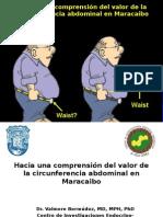 Sindrome Metabólico Dr. Valmore Bermudez 2013 Caracas