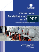 Directriz sobre accidentes e incidentes en el trabajo.pdf