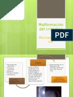 microesferofaquia final011
