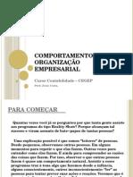 Comportamento e Organização Empresarial