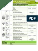 Cronograma de Actividades_Excel