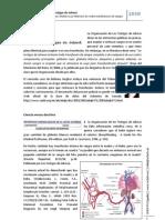 Dossier - Los Testigos de Jehová y su doctrina de la transfusión de sangre