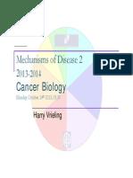 1-2 College Cancer Biology Final 2013