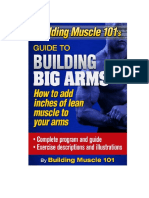 building-muscle101-big-arm-guide.pdf