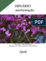 Apolo - Transformacao - Grafica
