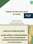 Cadena de Valor Argentina