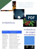 U4_Antibioticos_19926.pdf