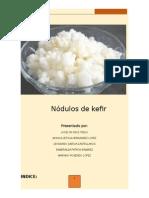 006 Revista Nodulos de Kefir