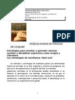 2015 Documento Estrategias Metodológicas generales y de Prácticas del Lenguaje  Didáctica de Prácticas del L I yII.docx