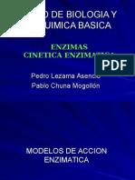 enzimas_cinetica