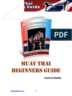 Muay Thai Beginners Guide