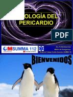 enf_pericardio_marina.ppt