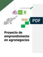 Guia Proyecto emprendimiento en agronegocios.pdf