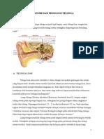 Anatomi Dan Fisiologi Telinga, LAring, Tonsil