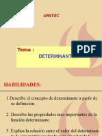 Determinantes.ppt