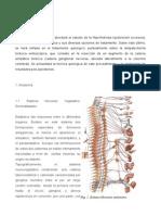 SImpatectomia Toracica