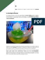 Mixología Molecular
