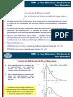 Tema 1 Parte II Pesos Moleculares.2