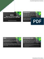 WSX - Agente de Extensión de Servidor Web