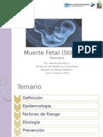 Seminario Muerte Fetal