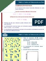Tema 1 Parte III Polimerización Por Pasos.2