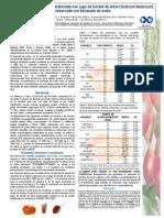249426137-Estabilidad-de-una-bebida-elaborada-con-jugo-de-tomate-de-arbol-Solanum-betaceum-preservada-con-benzoato-de-sodio.pptx