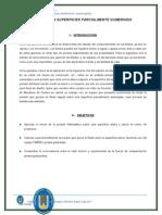 informe1 fluidos